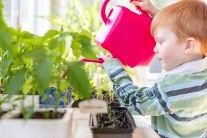 Giardinaggio per bambini: innaffiare