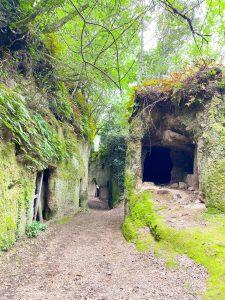 Maremma Toscana: cosa fare